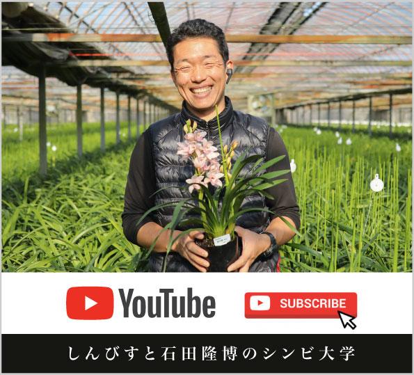 しんびすと石田隆博のシンビ大学|YouTubeチャンネル